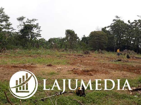 Jual Tanah Datar Murah SHM Bagus untuk Investasi atau Dijual Lagi