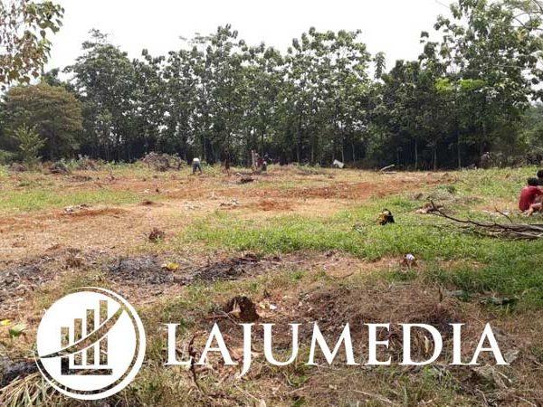 Tanah Datar Murah SHM Bagus untuk Investasi atau Dijual Lagi